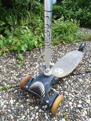 Kickboard Roller Scooter