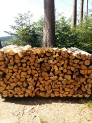 Brennholz Fichte weich