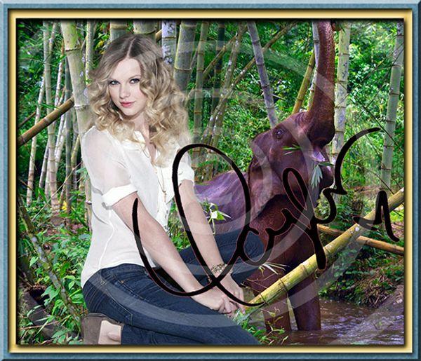 TAYLOR SWIFT Original Foto signiert