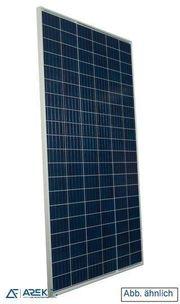 Suntech 300 W Solarmodule inkl