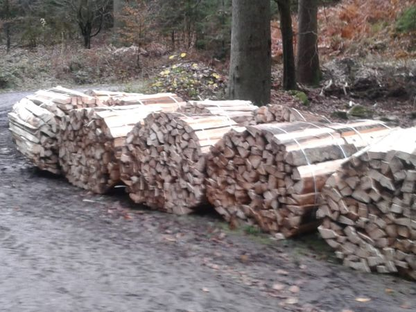 Fichten Brennholz