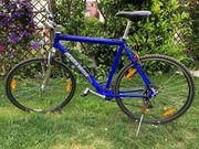 Herren - Fahrrad 28 Zoll Trekking-Bike