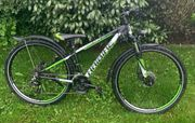 Mountain Bike Haibike Edition 7