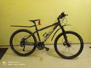 Fahrrad Mountainbike Focus Black Hills