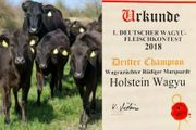 Wagyu Rinder Genetik vom Champion-Zuchtbetrieb