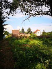 Natur-Grundstück in der Oberlausitz - eine
