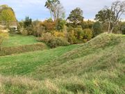 Koppelhang Grünfläche Fressweide