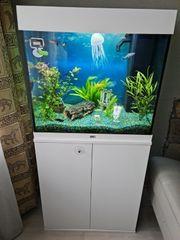 Aquarium mit Unterschrank und Zubehör