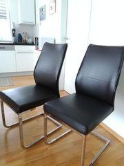 Stühle - Schwingstühle Esszimmer 6 Stück