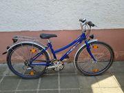 Recker Mountainbike 26 Zoll