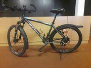 Focus Herren MTB Bike