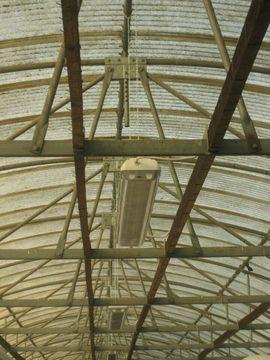 Bild 4 - Stellplatz für Womo Wowa Pkw - Plankstadt