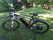 Mountain E-bike Ansmann Pedelec RS
