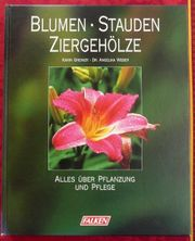 Falken Gartenbuch - Blumen Stauden Ziergehölze