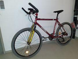 Damen Jugend Mountainbike MTB Fahrrad: Kleinanzeigen aus Bludesch - Rubrik Mountain-Bikes, BMX-Räder, Rennräder