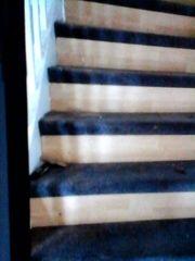 Teppich auf Treppe innen - jeweils
