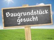 Bauplatz gesucht Kusterdingen Wankheim Immenhausen