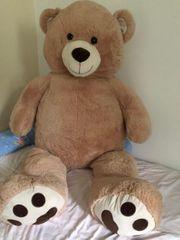 TeddyBär sehr groß ca 180cm