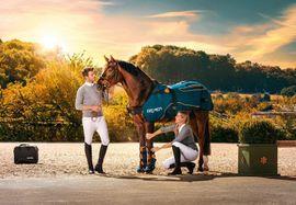 Bemer Horse Set