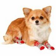 Karlie Doggy Socks Hundesocken 4er