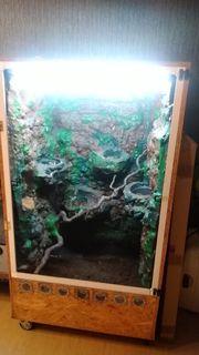 Terrarium zu verkaufen