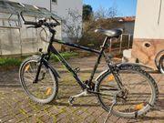 Herren-Mountainbike