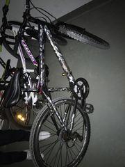 VISITOR Bike