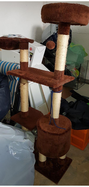 Gebrauchter Katzenkratzbaum zu verkaufen
