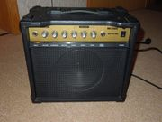 Gitarren Akkordeon-Verstärker 30 W mit