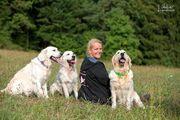 Beratung Unterstützung beim Second-Hand-Hund