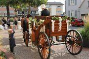 Wunderschöne Kutsche für Hochzeiten Weihnachtsmarkt