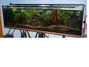 500 Liter Aquarium