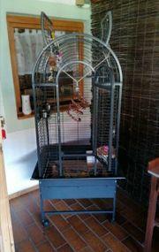 Vogel Papagei Kleintier Käfig