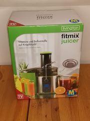 Fitmix von Livington Mixer Entsafter