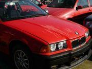 BMW e36 318 i Schlachtfest