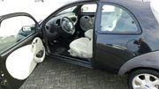 Ford KA in sehr gepflegtem