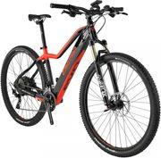 Ebike - Mountainbike Evo Pro von