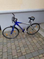 Bulls Fahrrad 28 Zoll Trekking