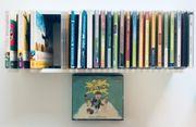 CD Regal mit 28 Stück