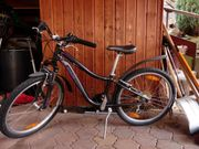24 Zoll Kindermountainbike spezalised