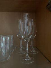 Große Kristallglas-Sammlung Schott Zwiesel Musica