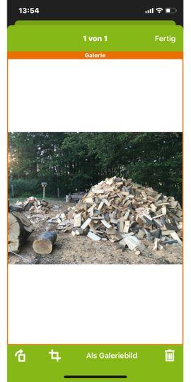 Dienstleistungen rund ums Haus, gewerblich - Brennholz und Baumfällung