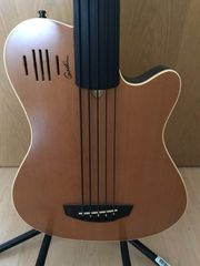 Godin A5 Bass Fretless