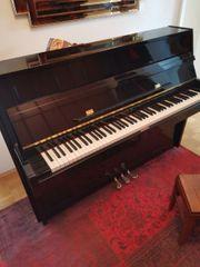Klavier 110 Richter