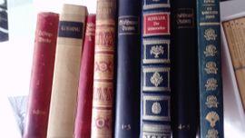 Schiller - Lessing - Bände Reclam - Büchlein: Kleinanzeigen aus Waghäusel - Rubrik Komplette Sammlungen, Literatur