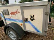 Hundeanhänger WT-Metall mit 3 Boxen