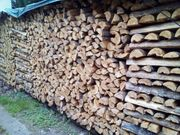 Brennholz Kiefer 3 Ster