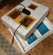 Inkubator Rep 3000