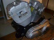 Harley XR 1200 Motor