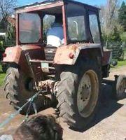 Traktor Schlepper Steyr
